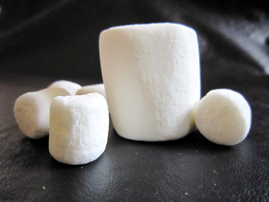 The Marshmallow Method to Fat loss